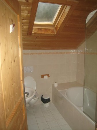 Riders Refuge - Chalet Carclion :                   top floor bathroom