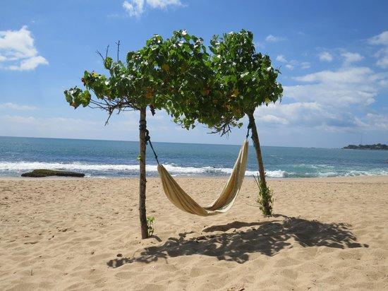 h ngematte ganesh garden picture of ganesh garden beach. Black Bedroom Furniture Sets. Home Design Ideas