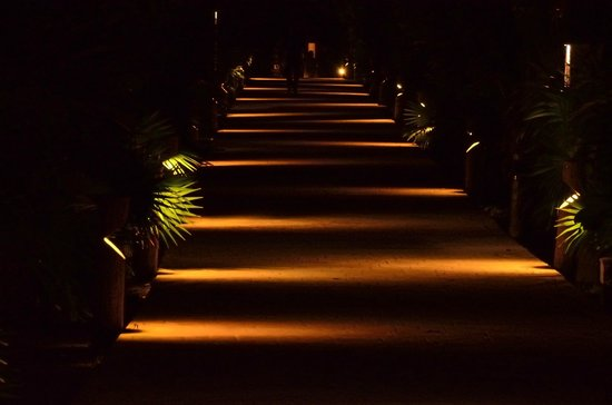 Catalonia Playa Maroma: Center Path at Nigth