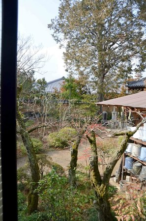 Shunkoin Temple Guest House: The view out the window!