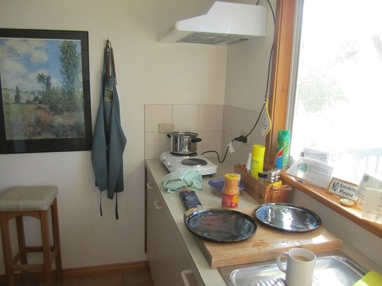 The Fig Tree: Shared kitchen