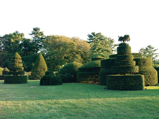 Longwood Gardens:                   Hedges