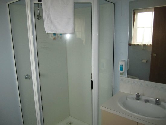Alanvale Apartments & Motor Inn: Shower