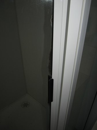 Alanvale Apartments & Motor Inn: Shower screen turning black