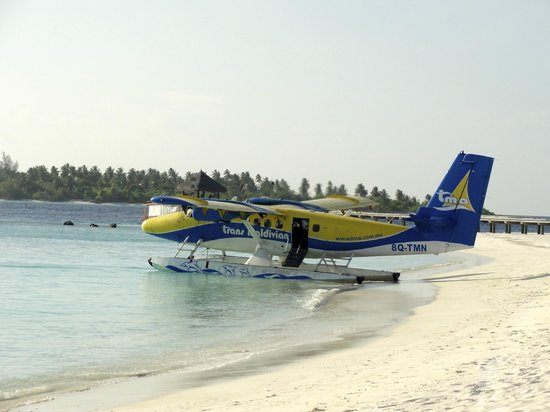 ‪‪Six Senses Laamu‬: Sea plane at the beach‬