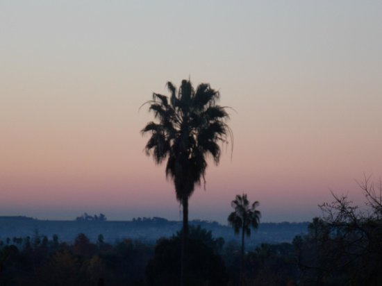 The Langham Huntington, Pasadena, Los Angeles:                                     sunrise from room