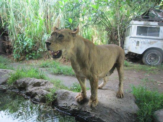 Mara River Safari Lodge:                   Resutaurant