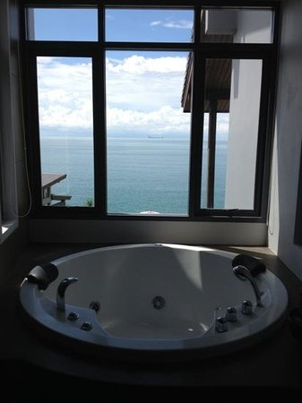 The Houben Hotel:                   tub with gorgeous view