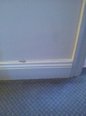 Three Tuns Hotel:                   skirting board