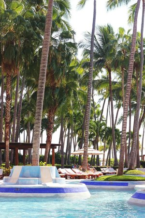 The Westin Resort & Spa, Puerto Vallarta:                   pool