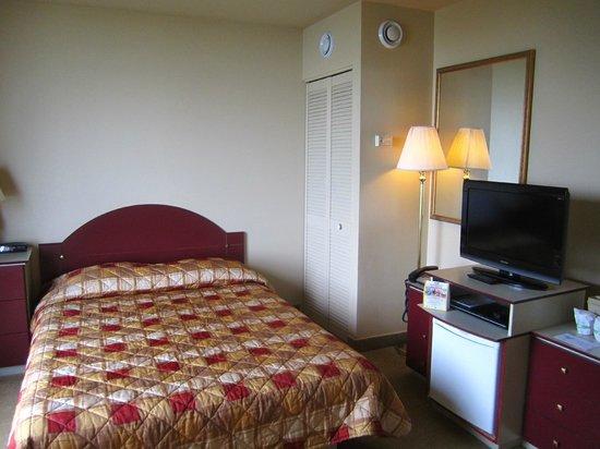 Hotel Pavillons Le Petit Manoir du Casino : Habitación