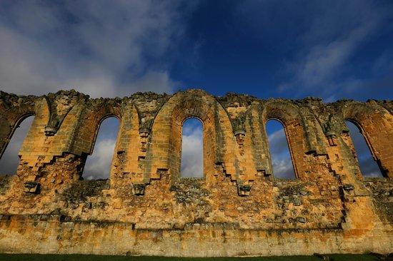 Byland Abbey:                   Byland Abbey                 