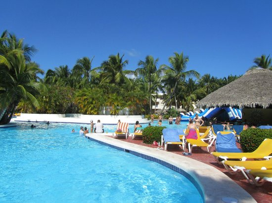 Catalonia Bavaro Beach, Casino & Golf Resort:                                     Swim Up Bar and the best cornor of the pool for sun,