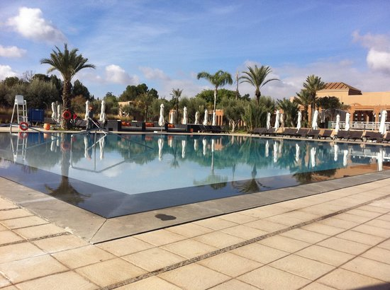 Pullman Marrakech Palmeraie Resort and Spa:                   The Pool