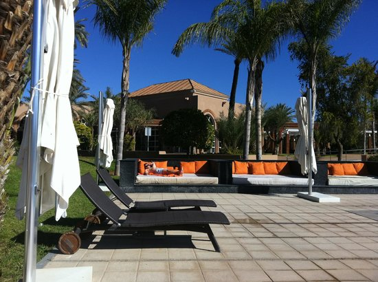 Pullman Marrakech Palmeraie Resort and Spa:                   Comfy Beds by the pool