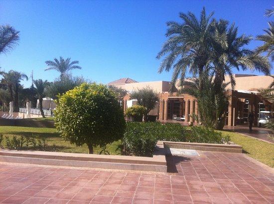 Pullman Marrakech Palmeraie Resort and Spa:                   Gardens around the pool