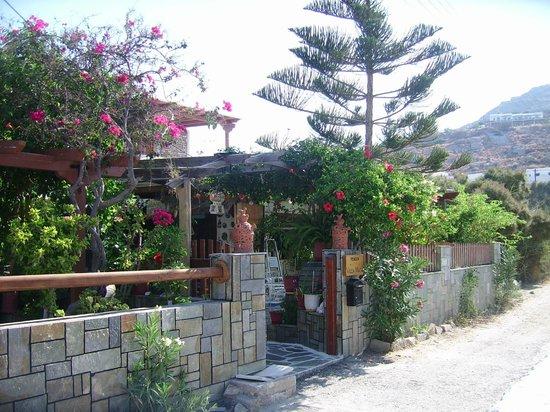 """Pension """"Villa Mata"""" chez notre Ami Lambros"""