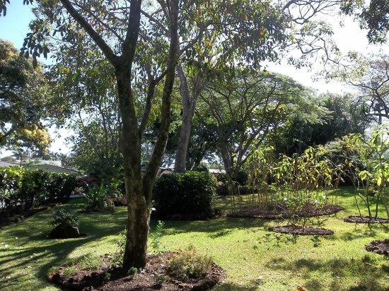 호텔 라 로사 드 아메리카 사진