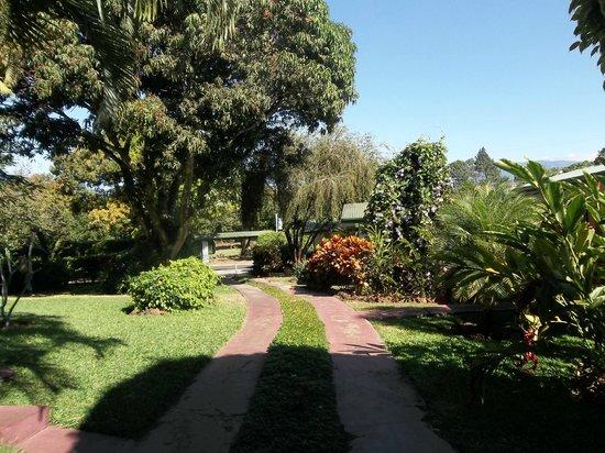 هوتل لا روزا داميريكا:                   Landscaping                 