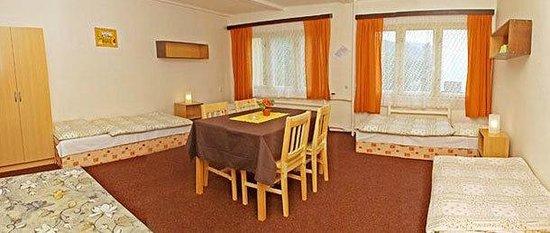 Penzion Hyskov u Berouna: Room