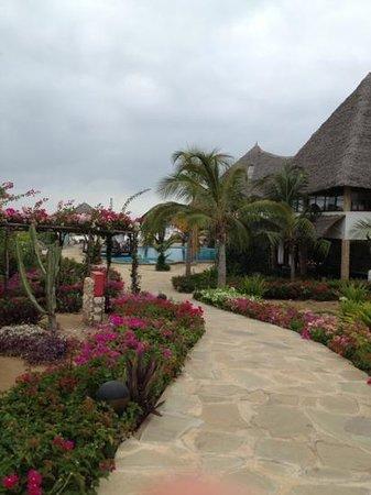Jacaranda Beach Resort:                                                       spettacolo