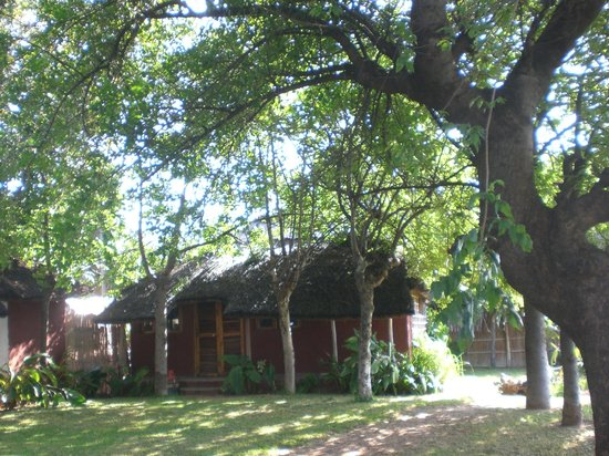 Mgoza Lodge:                   Chalet 1