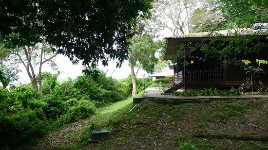 Century Langkawi Beach Resort:                   Resort
