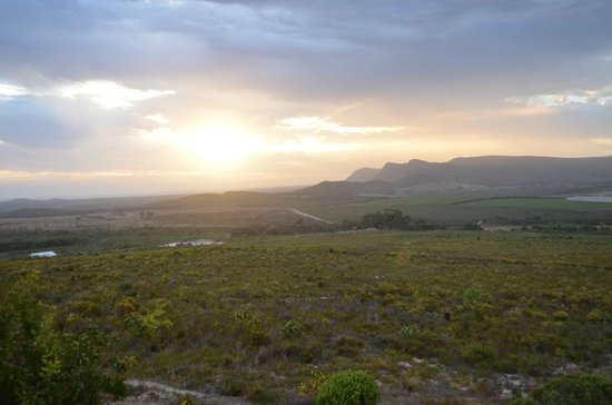 Farm 215 Nature Retreat & Fynbos Reserve:                   Room with a View