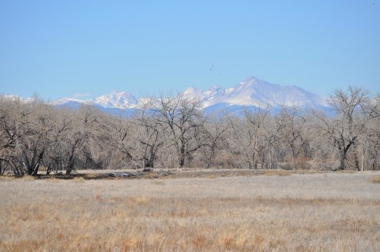 Rocky Mountain Arsenal National Wildlife Refuge:                   A Typical Mountain View