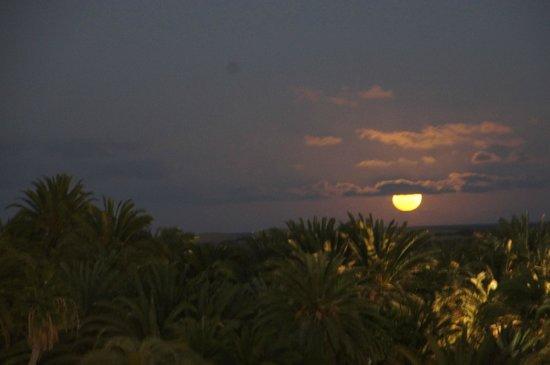 Lopesan Costa Meloneras Resort, Spa & Casino: Moon lit palms by Piscina Lago-pool