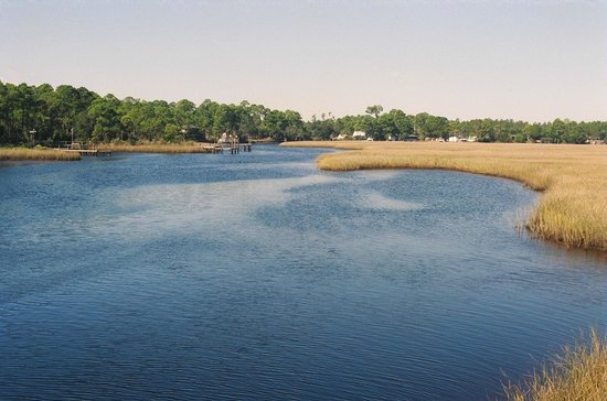 """The Old Carrabelle Hotel: """"Julia Mae's Marsh"""" - salt marshes and wildlife all around Carrabelle"""