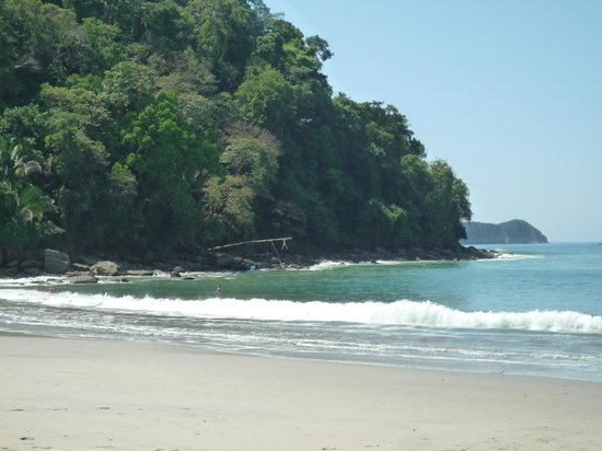Hotel La Palapa Eco Lodge Resort:                                                                                           surrou