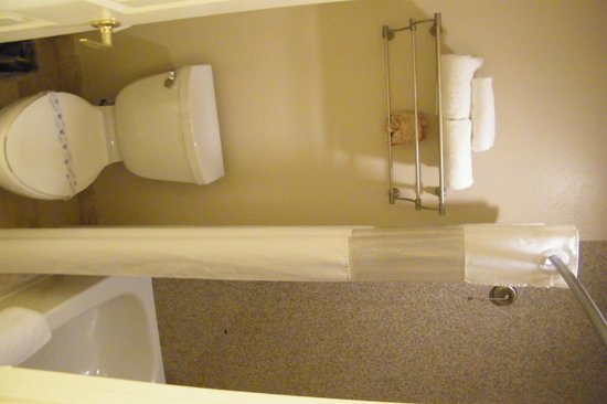 BEST WESTERN Plus Meridian Inn & Suites, Anaheim-Orange: bathroom