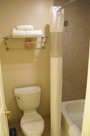 بست وسترن بلس ميريديان إن آند سويتس: bathroom