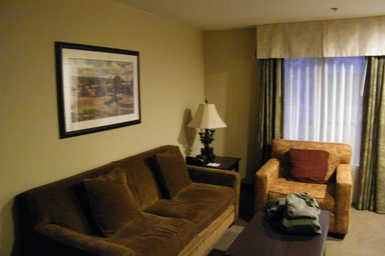 BEST WESTERN Plus Meridian Inn & Suites, Anaheim-Orange: living area... orange chair had a lovely stain