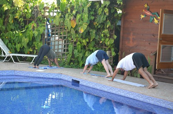 Garden of Eden Inn: Morning yoga by the pool