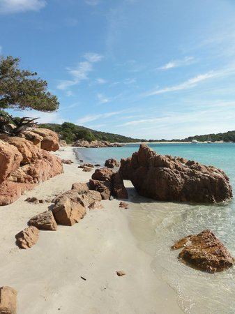 Residence Belvedere de Palombaggia : Nice beaches on Corsica