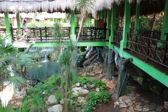 Iberostar Tucan Hotel:                                     pont pout le buffet