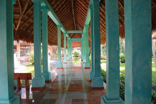 Iberostar Tucan Hotel:                                     quetzal