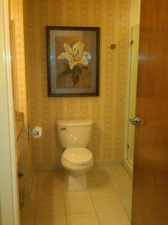 The Inn at Charles Town:                   Toilet
