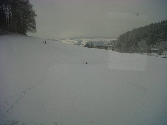 Uetliberg:                   One of the sledging areas... was great seeing the kids enjoying it