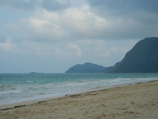 Aloha Private Tours: beautiful local beach
