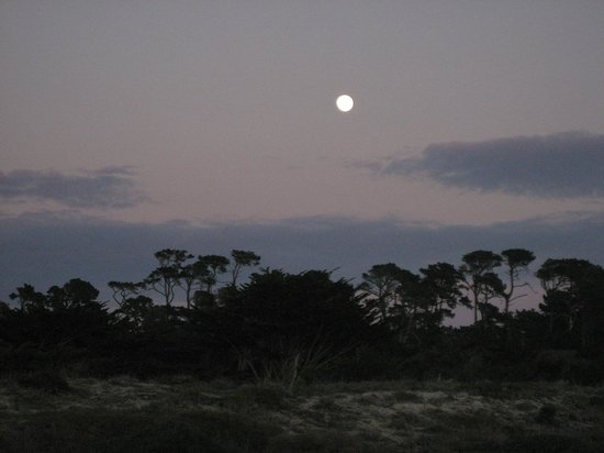 Asilomar Conference Grounds: Moonrise over the dunes