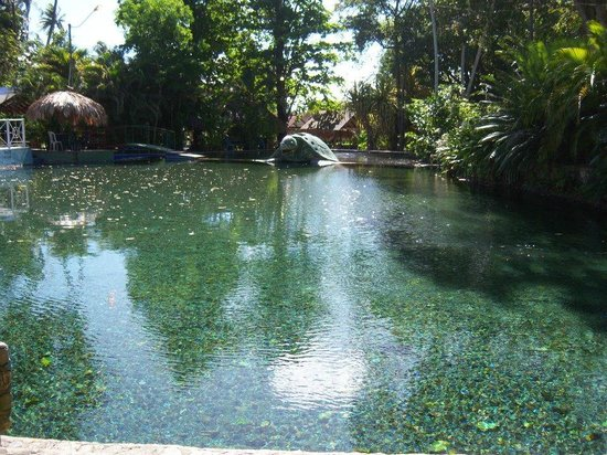 Las Aguas de Moises:                   esta es la poza natural de la posada muy buena