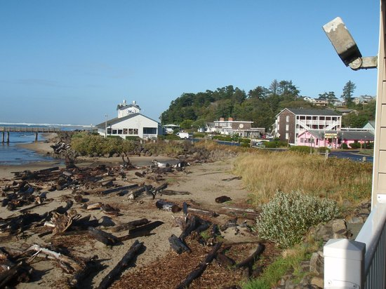 Siletz Bay Lodge:                                     Westward view of some businesses near the lodge.