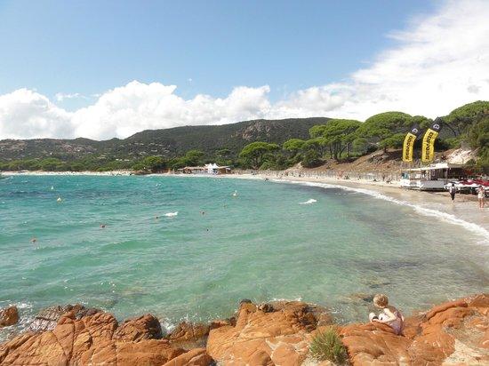 Plage de Palombaggia: Long beach