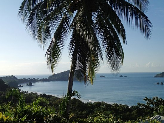 Hotel Costa Verde:                   Manuel Antonio