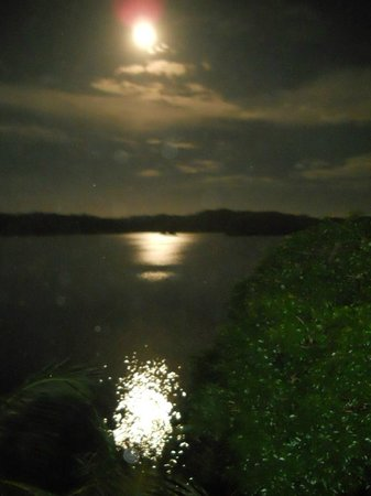 Garden of Eden Inn: Bocas moonrise