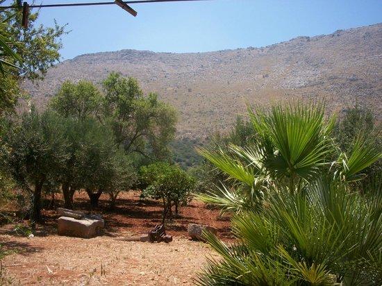 Casa Vacanza Baglio Montoleone:                   vista dalla veranda
