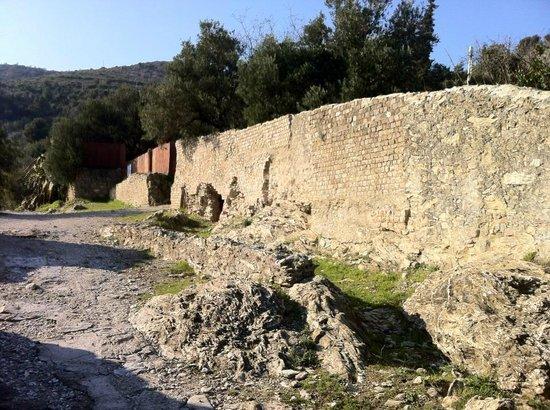 Via Julia Augusta:                                     un altra tomba romana sulla Via...